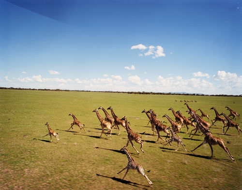 Simon Watson Tanzania.jpg