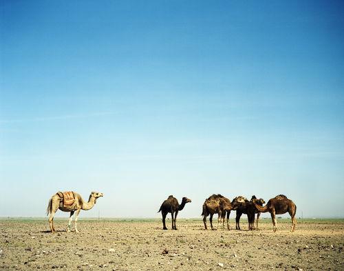 Morocco 2004 57.jpg